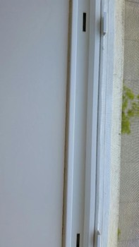 After Cleaning of a Windowsill in Seattle, WA